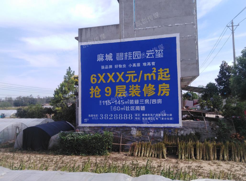麻城碧桂园云玺墙体广告